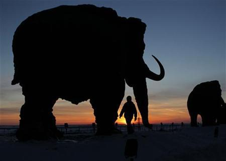 A child walks near a sculpture displaying a mammoth during sunset on the outskirts of Khanty-Mansiysk, March 4, 2011. REUTERS/Tatyana Makeyeva