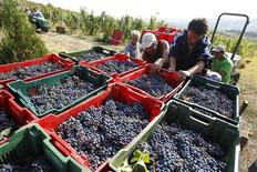 Romanians load boxes with harvested grapes in a truck at Basilescu vineyard in Urlati, 90km (58 miles) north of Bucharest in this picture taken September 19, 2012. REUTERS/Bogdan Cristel
