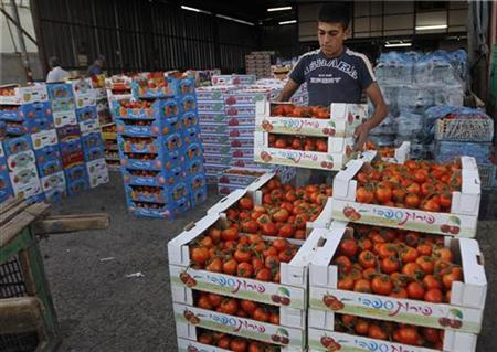 A worker arranges boxes of tomatoes at a wholesale vegetable and fruit market in the West Bank village of Beita, near Nablus September 2, 2012. REUTERS/Mohamad Torokman