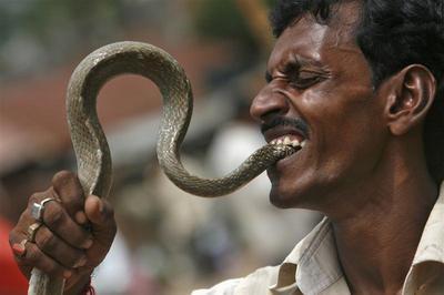Oddly India