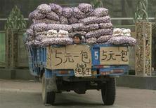 """Продавец чеснока на улице в китайском городе Чжэнчжоу в провинции Хэнань 15 апреля 2009 года. Китай столкнется с ростом мировых экономических рисков в 2013 году, среди которых - надвигающийся """"бюджетный обрыв"""" в США и долговой кризис в Европе, предупредили высокопоставленные чиновники КНР. REUTERS/Stringer"""