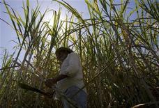 Um trabalhador corta cana de açúcar em uma fazenda no Rio de Janeiro. A moagem de cana-de-açúcar do centro-sul na temporada 2012/13 poderá ficar acima do previsto anteriormente. 29/08/2008 REUTERS/Bruno Domingos