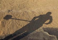Тень работника с лопатой на зернохранилище рядом с городом Аккол в Казахстане 11 октября 2011 года. Государственное статагентство Казахстана в четверг подтвердило данные об урожае зерна, которые заставили сравнивший их с данными спутников Минсельхоз заподозрить приписки со стороны региональных администраций. REUTERS/Shamil Zhumatov