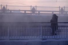Женщина идет по мосту морозным днем в Москве 3 февраля 2012 года. Выходные в Москве будут морозными - в субботу и воскресенье температура не поднимется выше минус 10 градусов, ожидают синоптики. REUTERS/Anton Golubev