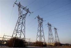 La ministre de l'Energie, Delphine Batho, a annoncé la facture d'électricité des Français augmenterait en moyenne de 2,5% le 1er janvier, du fait de la répercussion dans les tarifs de l'augmentation de la contribution au service public de l'électricité (CSPE), une taxe qui permet notamment de financer le développement des énergies renouvelables. /Photo d'archives/REUTERS/Vincent Kessler