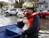 El refugio de Nueva York que acogió a 280 mascotas desplazadas por la supertormenta Sandy debe cerrar y, con casi la mitad de los animales aún sin reclamar, no puede descartar que se sacrifique a los que quedan. En la imagen de archivo, un bombero lleva a un perro en brazos en una zona anegada por el Huracán Sandy en Nueva Jersey el pasado 30 de octubre. REUTERS/Adam Hunger