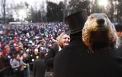 Groundhog co-handler Ron Ploucha holds Punxsutawney Phil in front of a record crowd estimated at 35,000 after Phil's annual weather prediction on Gobbler's Knob in Punxsutawney, Pennsylvania, on the 127th Groundhog Day, February 2, 2013. Phil did not see his shadow signaling an early end to winter. REUTERS/Jason Cohn