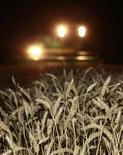 Комбайн убирает урожай зерна в поле около села Константиновское в Ставропольском крае 21 июля 2011 года. Российский производитель зерна и сахара Разгуляй планирует продать пакет акций в рамках усилий по улучшению своего финансового положения, сообщила компания во вторник. REUTERS/Eduard Korniyenko