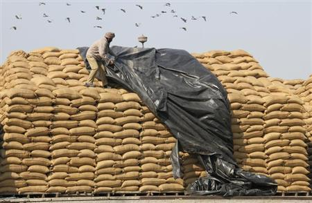 A worker uses a plastic sheet to cover sacks of rice at a wholesale grain market in Chandigarh February 9, 2012. REUTERS/Ajay Verma/Files