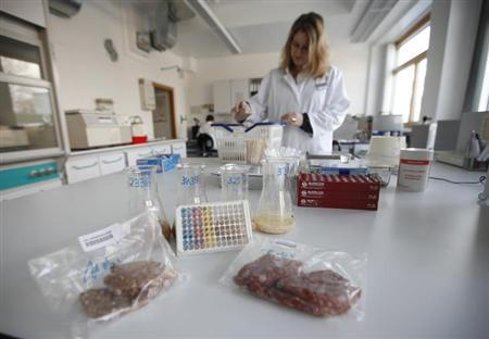 A finished test and samples of minced meat are seen at a laboratory of the federal state of North Rhine-Westphalia's food control institute in the western city of Krefeld February 13, 2013. The samples of minced meat are tested for the presence of horse meat as a precaution. REUTERS/Ina Fassbender (GERMANY - Tags: AGRICULTURE BUSINESS POLITICS FOOD)