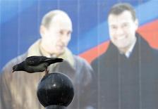 """Голубь на фоне плаката партии Владимира Путина """"Единая Россия"""" в Москве 29 февраля 2008 года. Кандидат Путина на пост главы Банка России Эльвира Набиуллина будет """"голубем"""" в стане """"ястребов"""" и принесет за собой в ЦБ угрозы смягчения денежно-кредитной политики, ослабления рубля, частичной потери команды и независимости, и это будет некоторое время держать рынки в напряжении, говорят эксперты. REUTERS/Shamil Zhumatov"""