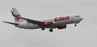 Selon des sources proches du dossier, la compagnie indonésienne à bas coût Lion Air s'apprête à passer à Airbus une commande record de 20 milliards de dollars (15,5 milliards d'euros) au prix catalogue. /Photo prise le 30 janvier 2013/REUTERS/Enny Nuraheni