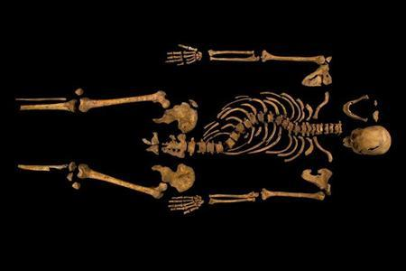 The skeleton of Richard III, which was discovered at the Grey Friars excavation site in Leicester, central England, is seen in this photograph provided by the University of Leicester and received in London on February 4, 2013. A skeleton with a cleaved skull and a curved spine entombed under a car park is that of Richard III, scientific tests confirmed, solving a 500-year-old mystery about the final resting place of the last English king to die in battle. REUTERS/University of Leicester/Handout