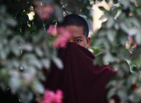 A Tibetan monk is pictured as he stands behind a tree during the 77th birthday celebrations of their exiled spiritual leader the Dalai Lama in Kathmandu July 6, 2012. REUTERS/Navesh Chitrakar/Files