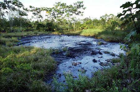 A waste pit filled with crude oil left by drilling operations years earlier from Texaco, now owned by Chevron, lies in a jungle clearing near the Amazonian town of Sacha, Ecuador, October 21, 2003. REUTERS/Lou Dematteis
