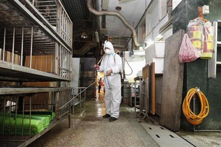 5月1日、中国で拡大しているH7N9型鳥インフルエンザについて、科学者からは、世界の健康に対する脅威で深刻に受け止めるべきとの声が上がっている。台湾の新北市で4月撮影(2013年 ロイター/Pichi Chuang)