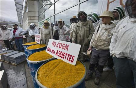 French beekeepers demonstrate to protest the use of genetically-modified organisms in front of French Monsanto headquarters in Bron, near Lyon, January 20, 2012. Sign reads, ''No GMO in our plates''. REUTERS/Robert Pratta