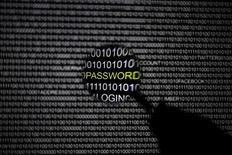 Foto ilustrativa tirada em Berlim. A Microsoft e o FBI, ajudados por autoridades em mais de 80 países, lançaram um grande ataque contra uma das maiores redes de crime cibernéticos do mundo, a qual se acredita ter roubado mais de 500 milhões de dólares de contas bancárias nos últimos 18 meses. 21/05/2013. REUTERS/Pawel Kopczynski