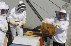 """Le président de l'Assemblée nationale Claude Bartolone (à droite), lors de l'installation de trois ruches sur les toits du """"Palais Bourdon"""", en avril dernier. Le miel produit par ces abeilles a été recueilli la semaine dernière et la première mise en pot a été effectuée ce mardi, après quelques jours de filtrage et de décantation de la récolte. /Photo prise le 25 avril 2013/ REUTERS/Jacky Naegelen"""