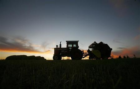 A tractor is silhouetted on a hillside in Prairie City, Iowa in this November 16, 2007 file photo. REUTERS/Shannon Stapleton