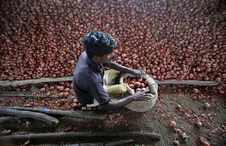 A labourer packs harvested onions into a sack on a farm that supplies fresh produce to Wal-Mart in Narayangaon, about 180 km (112 miles) west of Mumbai, September 27, 2012. REUTERS/Vivek Prakash/Files