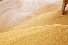 Зерно сгружается на терминале в Николаеве 2 июля 2013 года. Сильные дожди, охватившие всю Украину, могут стать причиной сокращения площадей под посевами озимых и замедления экспорта, но не помешают первым поставкам кукурузы в Китай в рамках $1,5-миллиардного соглашения, подписанного в прошлом году, сказал министр аграрной политики Николай Присяжнюк. REUTERS/Vincent Mundy