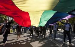 Gay-rights supporters carry a rainbow flag as they walk during a Pride March in Podgorica, October 20, 2013. REUTERS/Stevo Vasiljevic