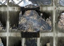 Montanha de açúcar queimado em armazém no porto de Santos, 18 de outubro de 2013. A maior comercializadora de açúcar do mundo, Copersucar, declarou força maior para alguns exportadores de açúcar independentes com contratos de envio no terminal do Porto de Santos que sofreu um incêndio na sexta-feira, disseram fontes do setor. 18/10/2013 REUTERS/Paulo Whitaker