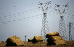 Líneas de alta tensión de Terna en Civitavecchia, Italia, jul 18 2007. Terna está mirando a Chile como un lugar para desarrollar plantas de energía renovable con el fin de venderlas, dijo el martes el presidente ejecutivo del operador italiano de redes eléctricas. REUTERS/Max Rossi