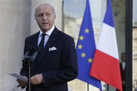 French Foreign Affairs Minister Laurent Fabius speaks to journalists following a meeting at the Elysee Palace in Paris November 3, 2013. REUTERS/Gonzalo Fuentes