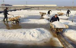 Employees work at a saltern in Rizhao, Shandong province, November 13, 2013. REUTERS/China Daily