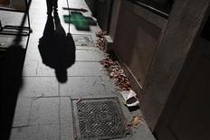 A man's shadow is cast on a pavement as he walks on the 11th day of an indefinite strike by street cleaners in Madrid November 15, 2013. REUTERS/Juan Medina