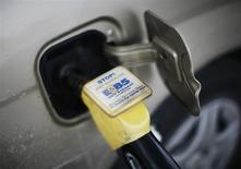 E85 ethanol fuel is shown being pumped into a vehicle at a gas station selling alternative fuels in the town of Nevada, Iowa, in this December 6, 2007, file photo. REUTERS/Jason Reed/Files