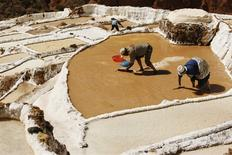 Unos trabajadores en el salar de las minas de Maras en Cusco, Perú, jul 3 2009. La economía peruana creció un 5,42 por ciento interanual en octubre, por encima de lo previsto por el mercado y la mayor tasa en cinco meses, informó el lunes el Gobierno. REUTERS/Enrique Castro-Mendivil