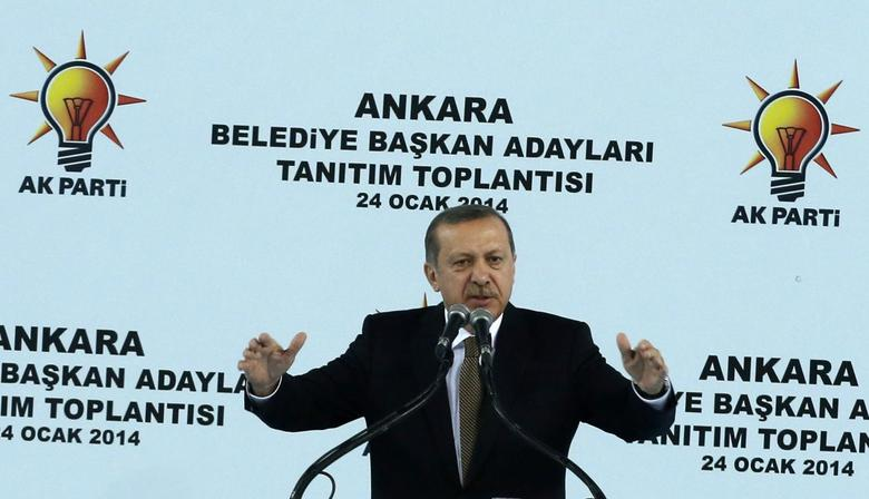 Turkey's Prime Minister Tayyip Erdogan addresses his supporters during a meeting of the ruling AK Party (AKP) in Ankara January 24, 2014. REUTERS/Umit Bektas