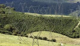 Torres de transmissão de energia elétrica passando por uma fazenda de café em Santo Antonio do Jardim. A Agência Nacional de Energia Elétrica (Aneel) propõe que os consumidores paguem, em 2014, um total de 5,6 bilhões de reais para cobrir o déficit estimado para a Conta de Desenvolvimento Energético (CDE), com impacto de 4,6 por cento nas tarifas deste ano. 06/02/2014 REUTERS/Paulo Whitaker