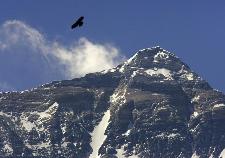 A bird flies in front of the peak of Mount Everest, also known as Qomolangma, as seen from near Everest Base Camp in the Tibet Autonomous Region April 29, 2008. REUTERS/David Gray