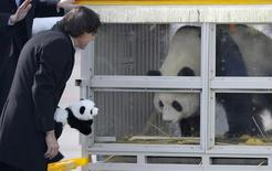 Belgium's Prime Minister Elio Di Rupo looks at the giant panda, Hao Hao, at the Brussels airport February 23, 2014. REUTERS/Laurent Dubrule