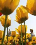 Женщина проходит мимо клумбы с тюльпанами у Новодевичьего монастыря в Москве 19 мая 2007 года. Трехдневные праздничные выходные обещают Москве потепление, прогнозируют синоптики. REUTERS/Denis Sinyakov