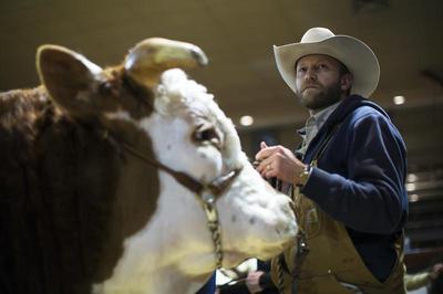 Canada's big bull sale