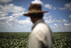 O fazendeiro Rudelvi Bombarda observa sua plantação de soja em Barreiras. O Departamento de Agricultura dos Estados Unidos (USDA) reduziu nesta segunda-feira a estimativa de safra de soja do Brasil da temporada 2013/14 para 88,5 milhões de toneladas, ante 90 milhões de toneladas da projeção de fevereiro. 06/02/2014 REUTERS/Ueslei Marcelino