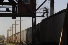 Dan Laramee loads wheat from the Canadian prairies onto grain railway cars on the pioneer grain elevator in Carseland, Alberta, October 2, 2011. REUTERS/Todd Korol