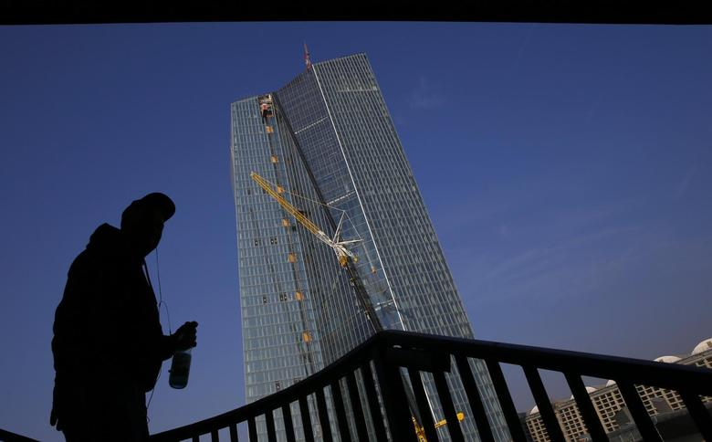 An American tourist stands under a bridge as he looks at the construction site of the new European Central Bank (ECB) headquarters in Frankfurt March 14, 2014. REUTERS/Kai Pfaffenbach