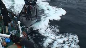 "Sea Shepherd vessel ""The Bob Barker"" is pictured in contact with the port side stern of Japanese whaling ship Yushin Maru in the Southern Ocean in this February 2, 2014 handout photo by the Institute of Cetacean Research. REUTERS/Institute of Cetacean Research/Handout via Reuters"
