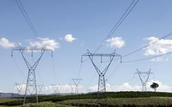 Torres de transmissão de energia elétrica em uma fazenda de café, em Santo Antônio do Jardim. A Agência Nacional de Energia Elétrica (Aneel) aprovou nesta terça-feira o edital do leilão de energia existente A-0, marcado para 30 de abril, com preços-teto de 262 reais por megawatt-hora (MWh) para energia termelétrica, inclusive biomassa, e 271 reais por MWh para energia hidrelétrica, no produto por quantidade. 06/02/2014 REUTERS/Paulo Whitaker
