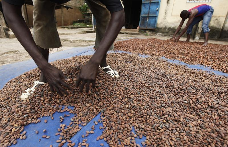 Confectioners sweet on ADM's decision to keep cocoa business | Reuters