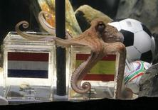 "Two year-old octopus Paul, the so-called ""octopus oracle"" predicts Spain's 2010 soccer World Cup final victory over The Netherlands by choosing a mussel, from a glass box decorated with the Spanish national flag instead of a glass box with the Dutch flag, at the Sea Life Aquarium in the western German city of Oberhausen July 9, 2010.  REUTERS/Wolfgang Rattay"