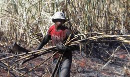 Un hombre cosecha caña de azúcar en Maringa, Brasil, mayo 14 2011. La producción de azúcar en el centro sur de Brasil cayó en la segunda quincena de julio a 2,24 millones de toneladas, respecto a 2,55 millones en las dos semanas anteriores, debido a las lluvias en la región productora, dijo el martes la asociación de la industria Unica. REUTERS/Rodolfo Buhrer/La Imagem