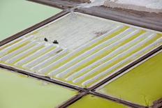 Vista aérea de una psicina de litio de Soquimich en el salar de Atacama, Chile, ene 10 2013. Una comisión de expertos propuso el martes al Gobierno chileno que la explotación de litio en el país se realice mediante una alianza público-privada, sin que el Estado ceda el control del recurso debido a su potencial estratégico. Reuters/Iván Alvarado