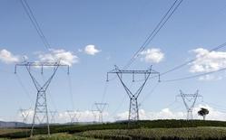 Torres de transmissão de energia em Santo Antônio do Jardim.   07/02/2014  REUTERS/Paulo Whitaker